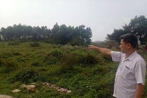 Nghệ An: Người dân Châu Bình 'dài cổ' chờ cấp đất