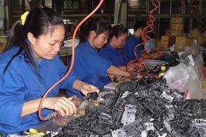 Vinakip áp dụng ISO 9001:2015: Giảm 60% sản phẩm lỗi, hỏng