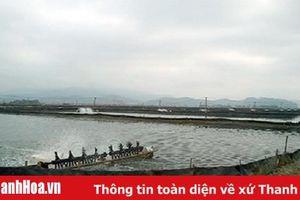 Chủ tịch UBND huyện Hoằng Hóa trả lời đơn bà Lê Thị Truy, xã Hoằng Ngọc