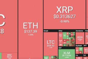 Thị trường tiền mã hóa rực đỏ, Bitcoin văng khỏi ngưỡng 4.000 USD