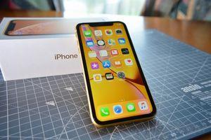 iPhone XR cũ 15 triệu về ồ ạt, người dùng VN chê đắt