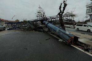 Mozambique: Hơn 200 người chết do bão Idai