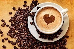 Giá cà phê đồng loạt tăng mạnh trở lại