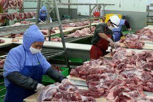 Bảo đảm cân đối cung cầu nguồn thịt lợn trước dịch bệnh tả lợn châu Phi