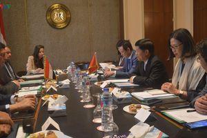 Ai Cập coi Việt Nam là một trọng tâm trong chính sách hướng Đông