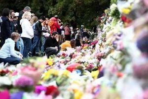 New Zealand cấm súng trường tấn công và vũ khí bán tự động