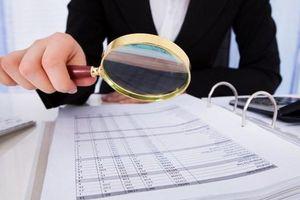 'Ngâm' báo cáo tài chính CTCP Kỹ thuật điện Sông Đà bị phạt 85 triệu đồng
