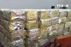 Thu giữ 300 kg ma túy từ đường dây mua bán xuyên quốc gia