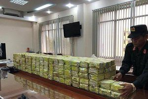 Phá đại án nửa tấn ma túy: Vỏ bọc công ty của 'kho hàng' chứa ma túy