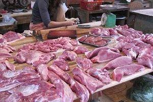 Dịch tả lợn châu Phi: Người tiêu dùng không nên hoang mang