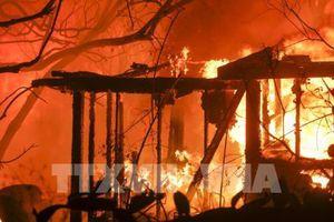 Mỹ: Huy động vệ binh quốc gia ứng phó với cháy rừng