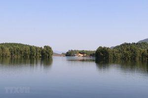 Phủ xanh vùng đất bán ngập để tạo cảnh quan du lịch hồ Thác Bà
