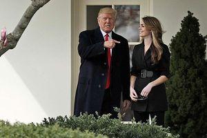 'Con gái' Hope Hicks đồng ý hợp tác với Hạ viện điều tra ông Trump