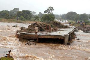 Chưa ghi nhận người Việt bị ảnh hưởng do bão Idai