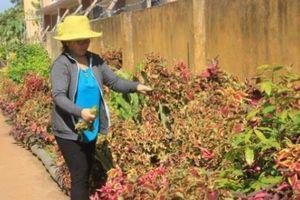 Người Châu Ro ở Xuân Lộc làm đường ấp đẹp như tranh