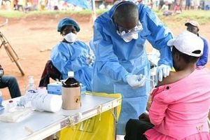 Dịch Ebola lây lan ở CHDC Congo