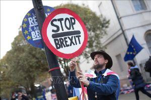Trên 1 triệu người Anh kiến nghị ngừng Brexit