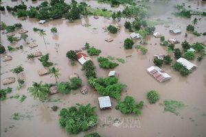 Nguy cơ 'đợt tàn phá thứ hai' sau bão Idai tại châu Phi