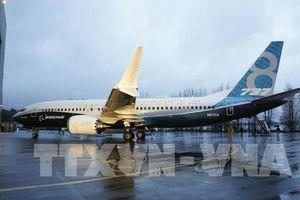 Boeing có kế hoạch trang bị đèn báo hiệu sự cố cho Boeing 737 MAX
