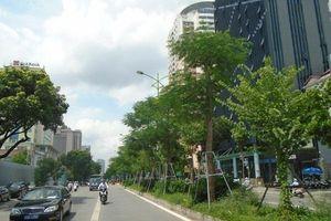 Hà Nội: Tập trung giải pháp nâng cao chất lượng không khí