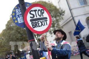 Vấn đề Brexit: Tuần hành phản đối Brexit lớn nhất trong nhiều thập kỷ tại London