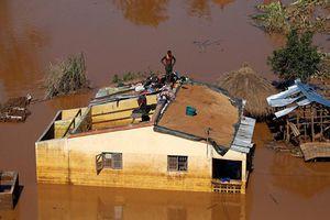 Bão Idai khiến 430 người thiệt mạng ở Mozambique, Zimbabwe, Malawi