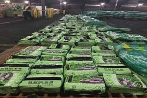 Bắt giữ thêm 276kg ma túy đá trong đường dây buôn bán ma túy xuyên quốc gia cực khủng