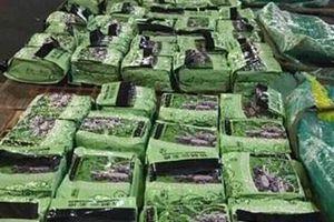 Bắt thêm 276kg ma túy trong đường dây mua bán ma túy xuyên quốc gia