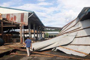 Lốc xoáy kinh hoàng ở Đạ Huoai gây thiệt hại gần 5,5 tỉ đồng