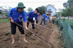 T.Ư Đoàn tổ chức hoạt động tình nguyện tại quê hương Lý Tự Trọng