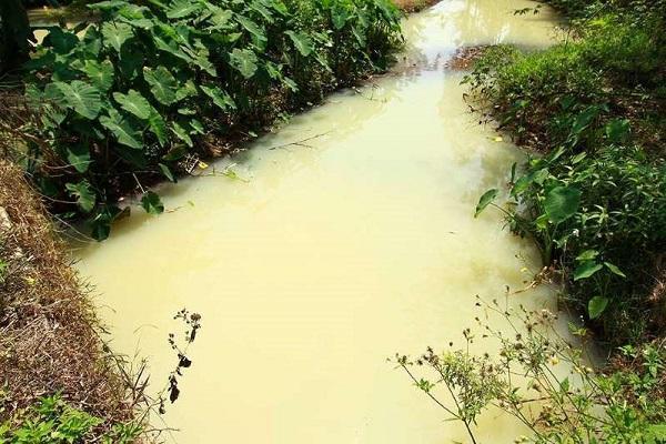 Đà Nẵng: Lấy mẫu nước xả thải KCN Hòa Cầm phân tích thông số môi trường