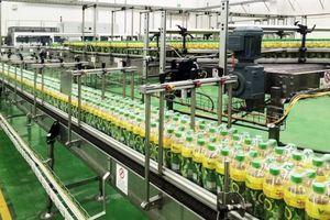 Công nghệ hiện đại giúp Trà Xanh Không Độ giữ lại tối đa hàm lượng EGCG có trong lá trà