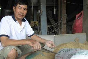 Bất ngờ người đến nhận chủ nhân số vàng trong bao lúa