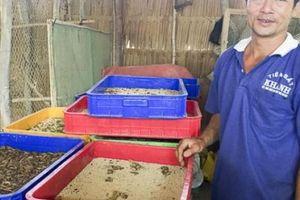 Trang trại nuôi thập cẩm các loài đặc sản, quý hiếm, thu tiền tỷ