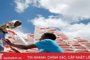 Bão Idai khiến 128.000 người dân Mozambique phải sống trong lều tạm
