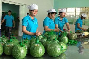 Xuất khẩu chính ngạch sang Trung Quốc: Những điều doanh nghiệp cần biết
