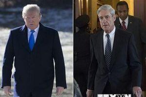 Công bố tóm tắt kết luận cuộc điều tra Nga can thiệp bầu cử Mỹ