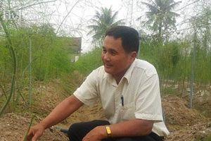 Thanh Hóa: Rau hay bị ế chuyển trồng măng tây, hái bao nhiêu lái khuân hết