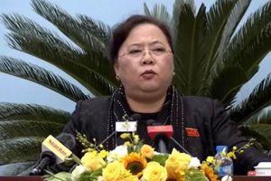 Chủ tịch HĐND Hà Nội: Vì sao bỏ lọt công trình vi phạm 'to như con voi'?