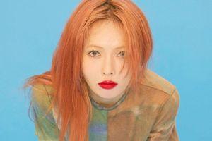 Các A-ing không phải chờ đợi lâu nữa: PSY đã đề cập đến chuyện comeback của HyunA!