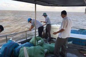 Bạc Liêu: Thả 4,5 triệu tôm giống xuống biển
