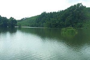 Xử lý trách nhiệm việc khai thác trái phép rừng phòng hộ hồ Núi Cốc