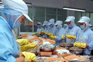 Rộng cửa cơ hội xuất khẩu sang các thị trường CPTPP