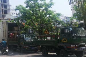 Phải xử lý tài xế lái xe cảnh sát vi phạm luật giao thông ở Đà Nẵng