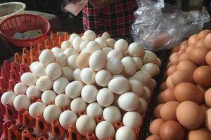 Trứng gia cầm tăng giá