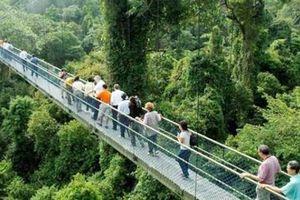 9 điểm du lịch miễn phí tuyệt đẹp ở Singapore, không biết thì 'tiếc đứt ruột'