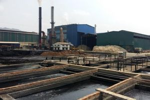 Bị tố gây ô nhiễm môi trường Công ty mía đường Sơn La nói gì?