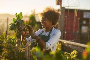 Những cách đơn giản để 'sống xanh' giúp bạn khỏe mạnh hơn