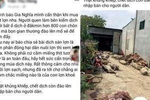 Phạt người tung tin thất thiệt 'đào heo chết lên bán' trên Facebook 10 triệu đồng