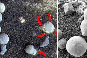 Nấm mọc trên sao Hỏa hé lộ sự sống ở Hành tinh Đỏ